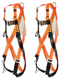 2 x harnesses