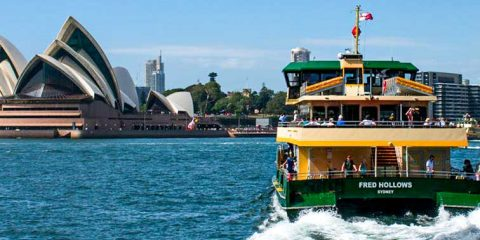 Sydney Ferries & Thern