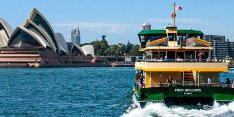 Sydney Ferries & Thern